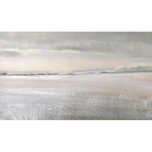 Winter Field 2