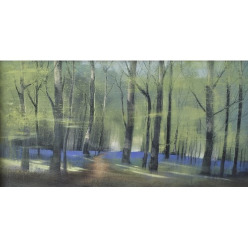 Beech Woods in April, oil on board, 16x30cm