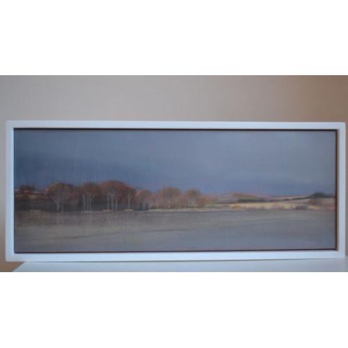 Framed size: 19 x 36cm