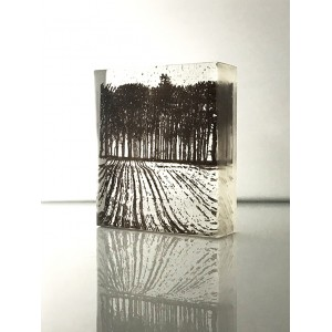 Ploughed Field, sepia and clear, mini cast 9x8cm