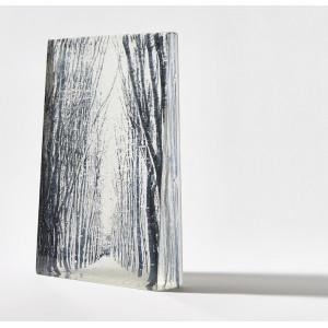 Den, Cast Glass, unique piece, 29 x 19 x 5 cm