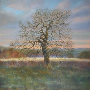 Winter Oak (Opalescence), oil on canvas, 90 x 90cm