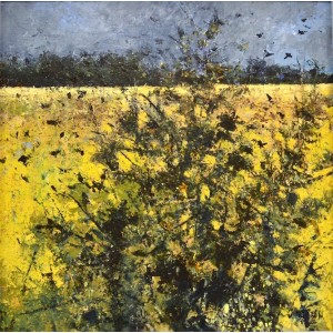 September Field with Rooks, oil and cold wax on board, 64.5 x 64.5cm