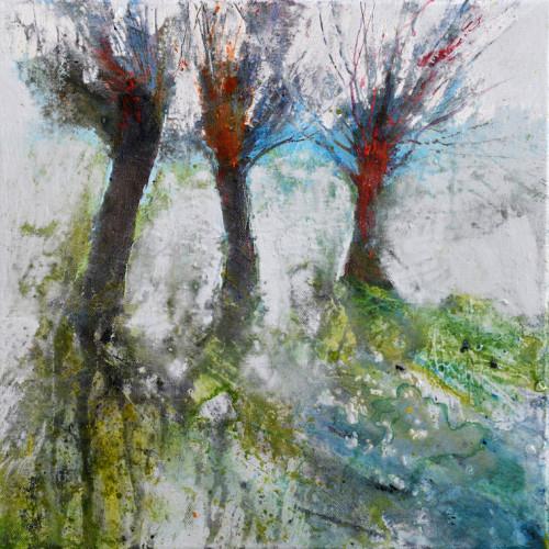 Pollarded Willows, acrylic on canvas, 30 x 30cm