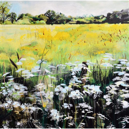 Buttercups and Cow Parsley, acrylic on canvas, 50 x 50cm